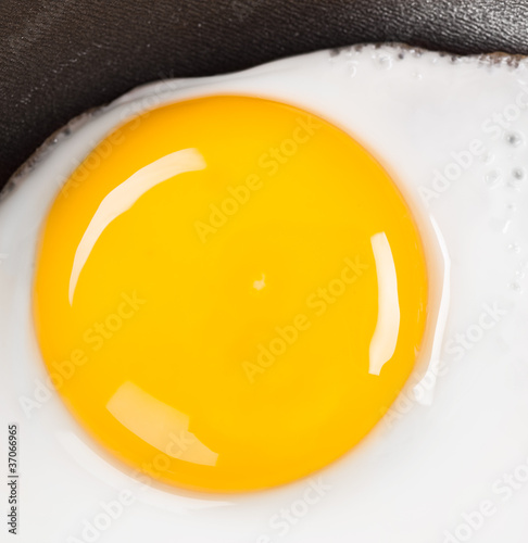 fried eggs close up