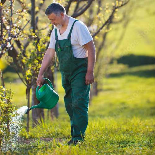 watering orchard/garden