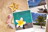 Fototapety Photos de plage, sable et coquillages