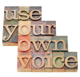 use your own voice poster