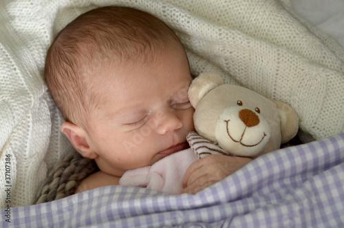 Fototapeten,newborn,schlafen,kuschelig,teddy