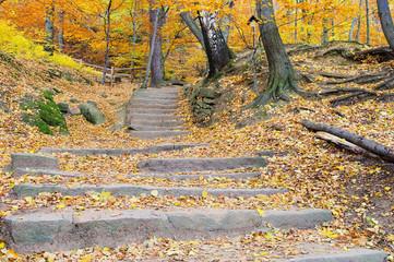 Wanderweg - hiking trail 05