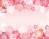 Fototapety japanese apricot background