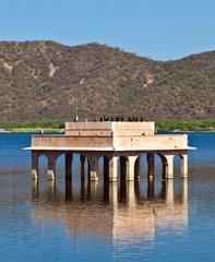 Cormorans at Water Palace (Jal Mahal) in Man Sagar Lake. Jaipur,