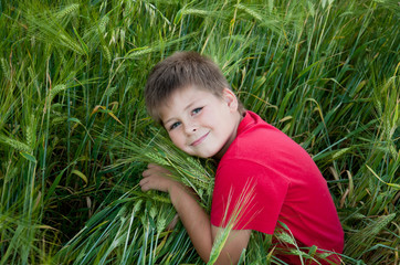 Boy on a green field of wheat, the summer survey