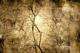 Fototapety Mystical tree. abstract grunge floral background