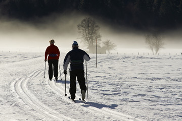 Skilanglauf in den Alpen