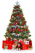 Christmas tree and presents isolated on white