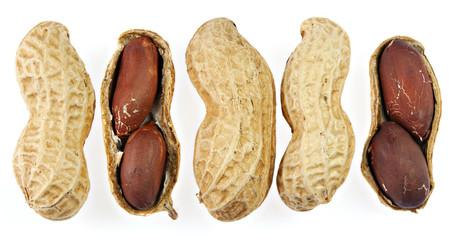 5 Erdnüsse in Reihe, isoliert