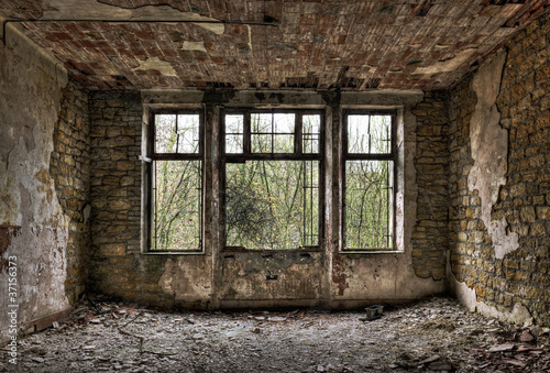 Overgrown window in a derelict room