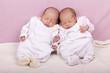 eineiige Zwillinge-  Schwestern schlafen auf dem Sofa