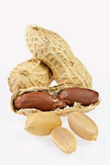 Erdnüsse, isoliert, vertikal