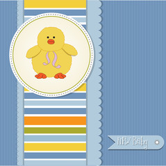 new baby boy announcement card with duck