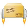 Postal box icon