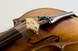 Vintage viola on white background