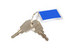 Two keys on a keyring with a blank key isolated over white
