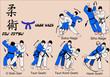 Jiu Jitsu Nage Waza 4 Color