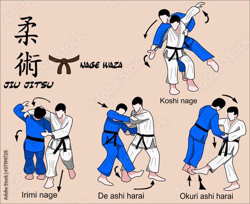 Jiu Jitsu Nage Waza 5 Color