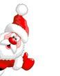 Babbo Natale OK Santa Claus