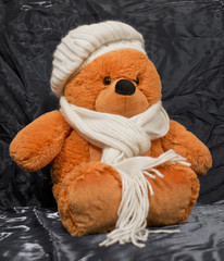 Teddy-bear in a scarf and a hat