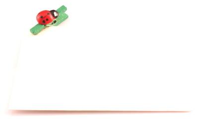 coccinella su molletta tiene biglietto bianco