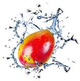 Mango with water splash, isolated on white background