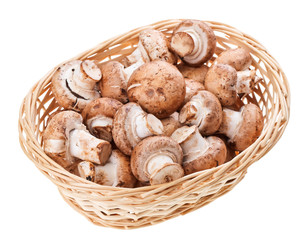 Brown champignon mushrooms in wicker wooden basket, isolated on