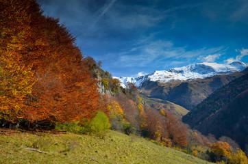 Un automne en vallée d'Aspe
