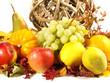 Herbstliche Früchte und Blätter