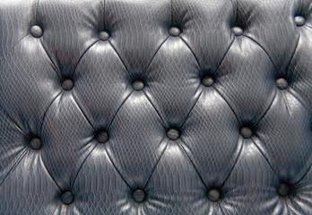 Snake leather skin