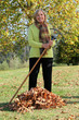 Woman raking up the autumn leaves