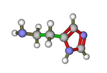 The molecule of histamine