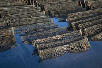 Poches à huîtres
