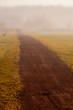 Couple walk in the mist