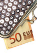 details of silver purse with fifty euros