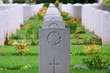 Canadian Soldier WW2 Gravestone Rows in Normandy, France - 37313957