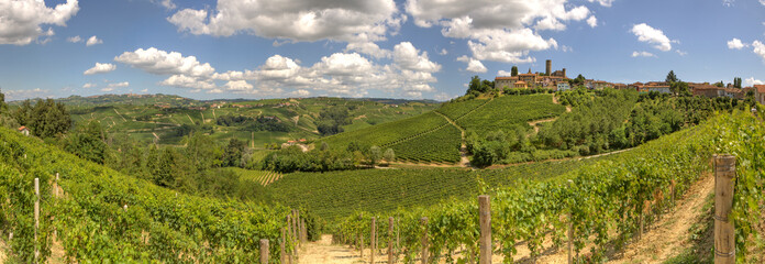 Panoramic view on vineyards and hills in Italy.