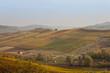 soft colorful hills