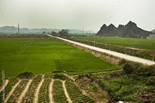 Road in Ninh Binh