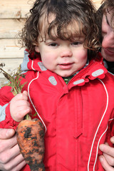 Little boy holding organic carrot