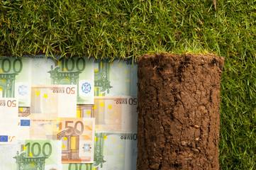 banconote in euro nascoste sotto un tappeto di erba