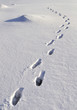 Human footprints in snow