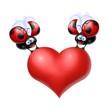 cuore coccinelle 6