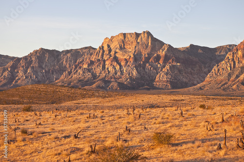 Warm Dawn Desert Light
