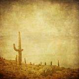 Fototapety grunge background with wild west landscape.