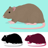 Cartoon Rat Rodent poster