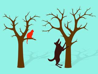 Barking Up The Wrong Tree Idiom