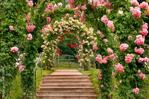 Zdjęcia na płótnie, fototapety na wymiar, obrazy na ścianę : Treppe im Rosengarten