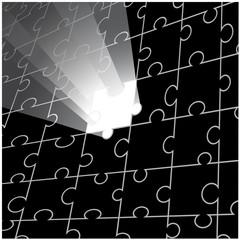 Vector puzzle design