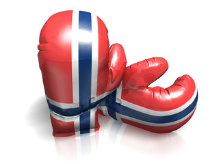 BOXING GLOVES NORWAY